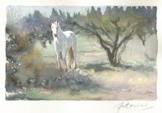"""""""Renaître de ses cendres"""" Aquarelle sur papier Arches. Format : 10x15. 2002"""