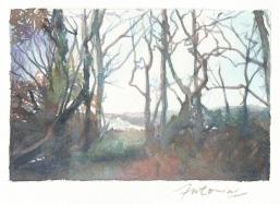 """""""Les branches déchirent le ciel"""" Aquarelle sur papier Arches. Format : 10x15. 2002"""