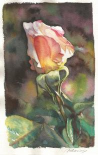 """""""Fraîcheur de l'aube"""" Aquarelle sur papier Arches. Format : 15x24. 2002"""