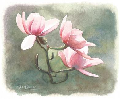 """""""Les fleurs de mon père"""" Aquarelle sur papier Arches. Format : 18x23. 2002"""