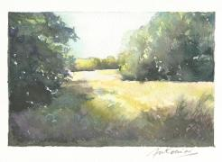 """""""A l'ombre des frênes"""" Aquarelle sur papier Arches. Format : 10x15. 2002"""