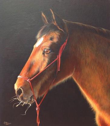 """""""Choulo"""" Acrylique sur toile. Format : 55x46. 2014."""